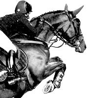 Armor equitation