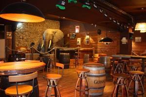 elephant_le_mans_dy_co_bis.jpg